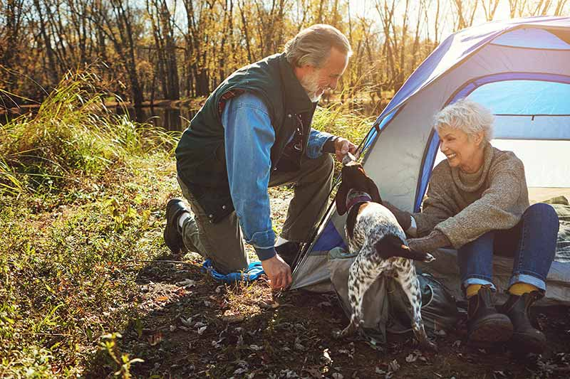 Dog Friendly Camping And Hiking In The Womelsdorf Area can be yours this fall