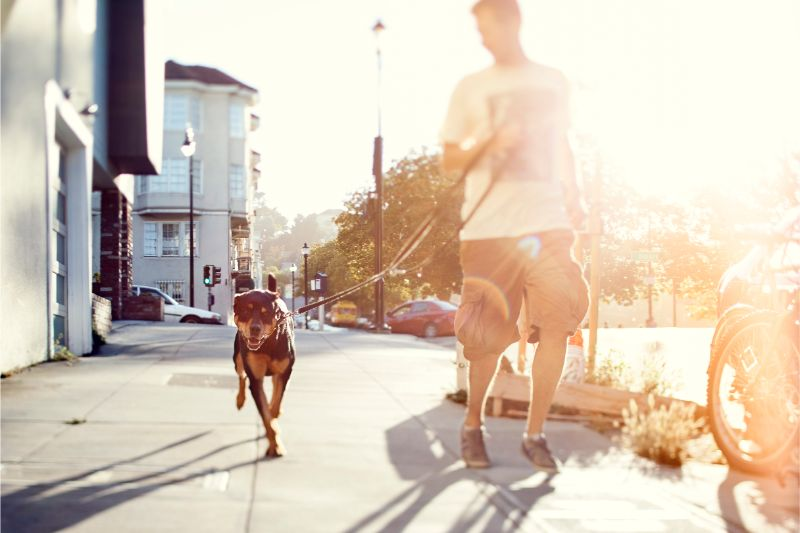 A man running with his dog on a city sidewalk