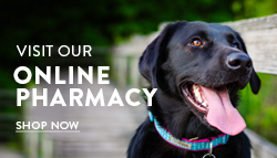 Black Lab Pharmacy picture